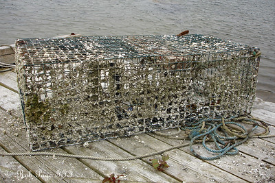 A very used lobster trap  - Pemaquid, ME ... August 27, 2006 ... Photo by Rob Page III
