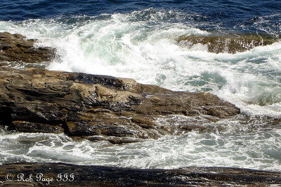 Waves crash onto the shore - Pemaquid, ME ... September 1, 2007 ... Photo by Rob Page III