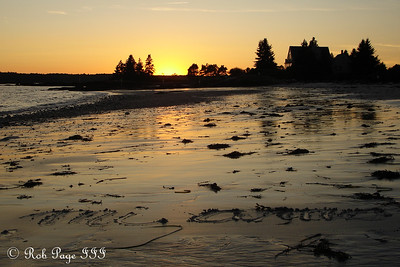 Mi amor at sunset - Pemaquid, ME ... September 2, 2007 ... Photo by Rob Page III