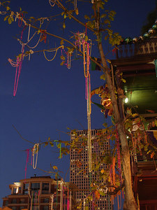 MArdi Gras along St. Charles Ave. - New Orleans, LA ... February 27, 2006 ... Photo by Rob Page III