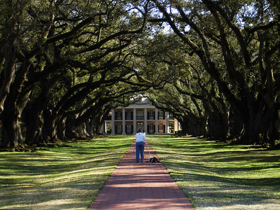 The walkway to the main house at the Oak Alley Plantation.  This house was built as a wedding gift by the original owner in the ealry 1800's.  The Oak trees in the front are about 300 years old and lead to the Missippi River - Vacherie, LA ... February 27, 2006 ... Photo by Rob Page III