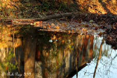 Autumn reflections - Frederick, MD ... November 7, 2009 ... Photo by Rob Page III