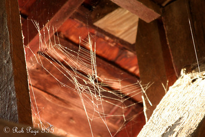 A spider-web inside the Utica covered bridge - Frederick, MD ... November 7, 2009 ... Photo by Rob Page III
