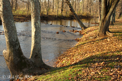 A beautiful river in fall - Frederick, MD ... November 7, 2009 ... Photo by Rob Page III