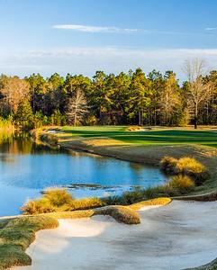 fallen-oak-golf-photography--3