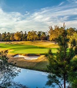 fallen-oak-golf-photography-