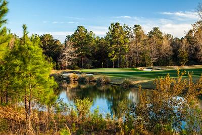 fallen-oak-golf-photography--2