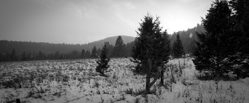 Central, Big Belts - Snow falling on a meadow near sunset