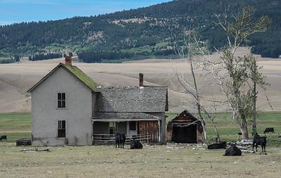 Abandoned Farm, Montana
