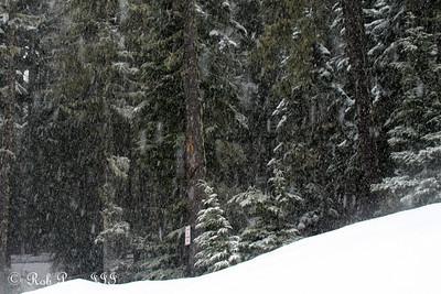 Mt. Hood Highlights