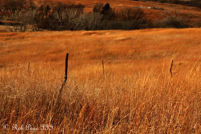 The prairie - Denton, NE ... November 27, 2010 ... Photo by Rob Page III