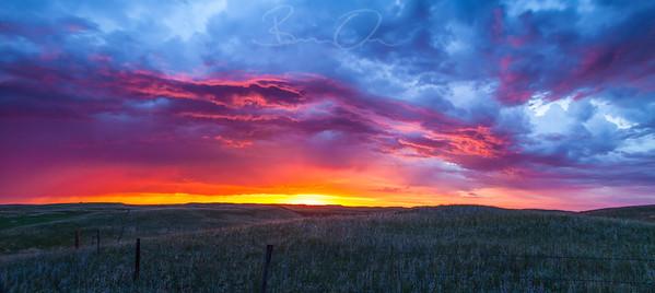 prairie-club--5