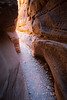Valley of Fire, White Domes Slot Canyon - End of slot lit by sun, vertical