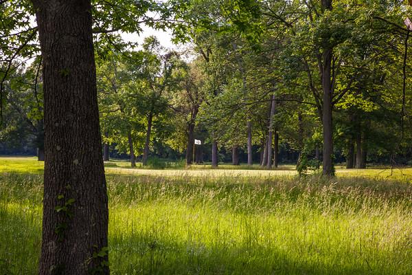 ash-brook-golf-course-5
