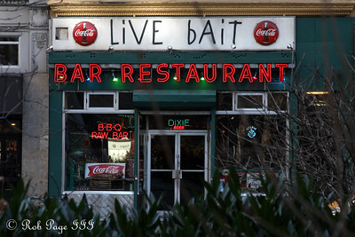 What could the 'live bait' be? - New York, NY ... November 28, 2008 ... Photo by Rob Page III