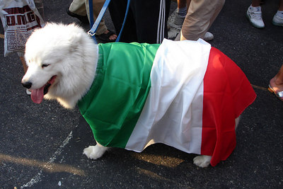 Even the dogs in Little Italy celebrated after Italy's victory over France in the 2006 World Cup final - New York, NY ... July 9, 2006 ... Photo by Rob Page III