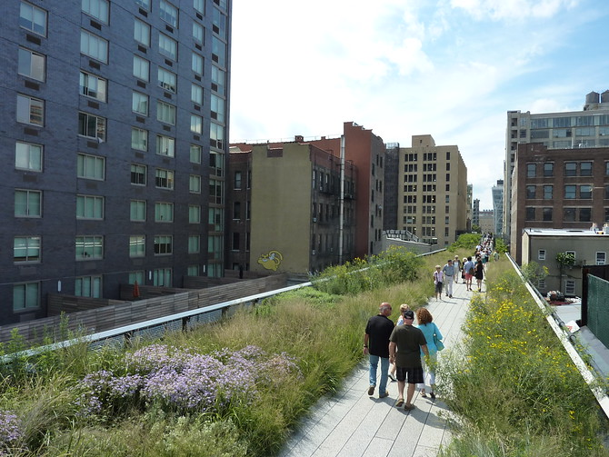 The High Line Greenery