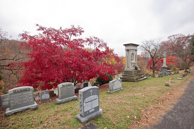 Crazy red trees—Sleepy Hollow Cemetery, Sleepy Hollow, New York