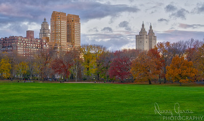 Autumn in Central Park
