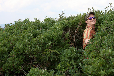 Searching for blueberries - Asheville, NC ... August 9, 2008 ... Photo by Rob Page III