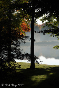 Looking out into the backyard at my parents' house - Chagrin Falls, OH ... October 7, 2011 ... Photo by Rob Page III
