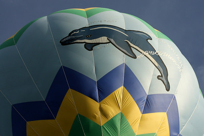 The dolphin balloon - Chagrin Falls, OH ... May 25, 2008 ... Photo by Rob Page III