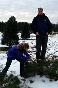 Cutting down the Christmas tree - Novelty, OH ... December 22, 2007