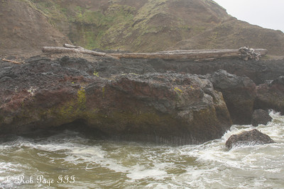 A log tossed onto the sea walls near Cooks Chasm - Cape Perpetua, Yachats, Oregon ... June 18, 2012 ... Photo by Rob Page III
