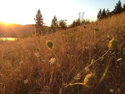 Southeast Eugene
