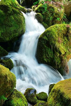Moss and waterfall