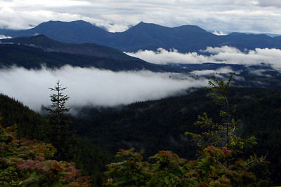 The fog nestles into the mountain valleys - Mt. St. Helens, WA ... June 29, 2007 ... Photo by Rob Page III