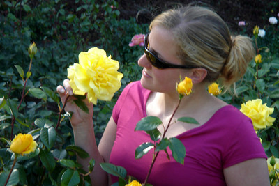 How does your yellow rose smell - Portland, OR ... July 3, 2007 ... Photo by John Dussel