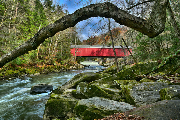 Bridge and trees and river in Pennsylvannia