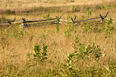 An old, split-rail fence - Gettysburg, PA ... August 16, 2008 ... Photo by Rob Page III