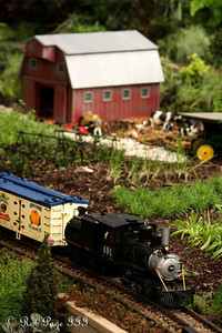 A train at the Phipps Conservatory - Pittsburgh, PA ... January 8, 2011 ... Photo by Rob Page III