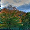Storm in Autumn