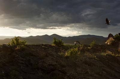 San Luis Valley, Colorado, USA, 2015.