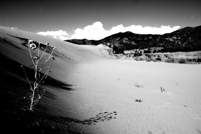 Great Sand Dunes National Park, San Luis Valley, Colorado, U.S.A., 2009