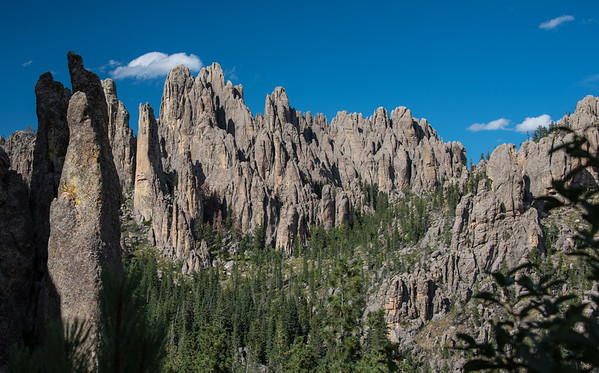 View Of The Needles, Black Hills