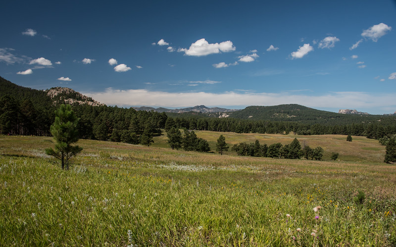 Mt. Rushmore from Custer State Park in South Dakota's Black Hills