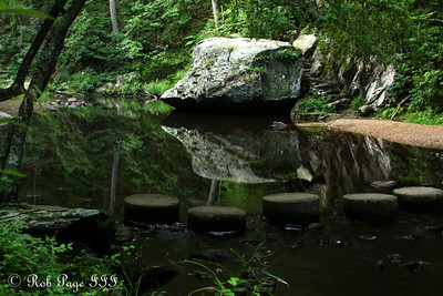 The creek below Otter Lake - Bedford, VA ... August 1, 2011 ... Photo by Emily Page
