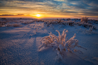 Winter Canyonlands Sunrise