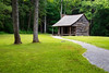 Great Smoky NP, Cades Cove - Cabin, two trees, and a lawn