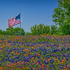 Ennis - Texas