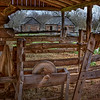 Barn and Slave Quarters