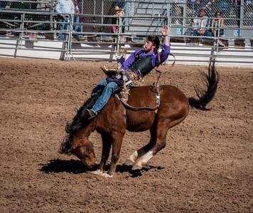 Tuscon Rodeo