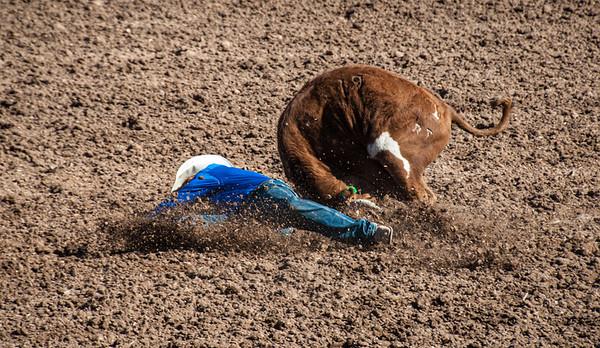 Hitting The Dirt, Tucson, 2014