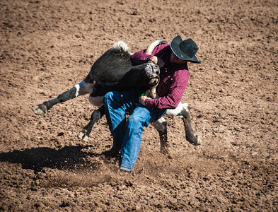 The Takedown, Tucson Rodeo