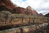Zion and Virgin River