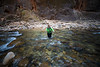 Zion, The Narrows - Woman navigating across rapids in river
